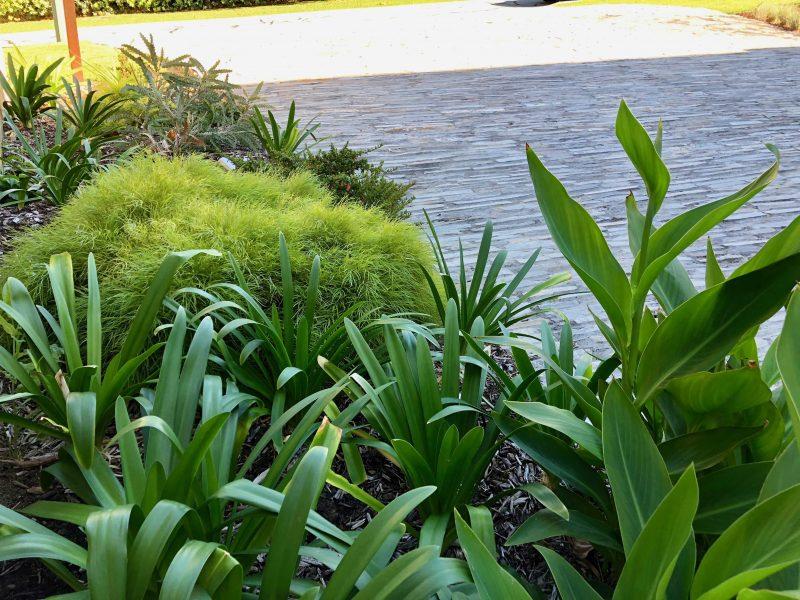Perth_Home_Redesign_Hill_Terrace_Mosman_Park2