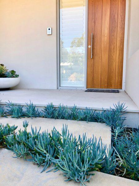 Perth_Landscaper_Hill_Terrace_Mosman_Park2